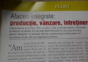 producator-flori (16)